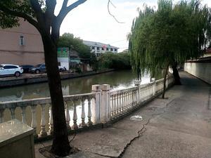 泗泾绿中海