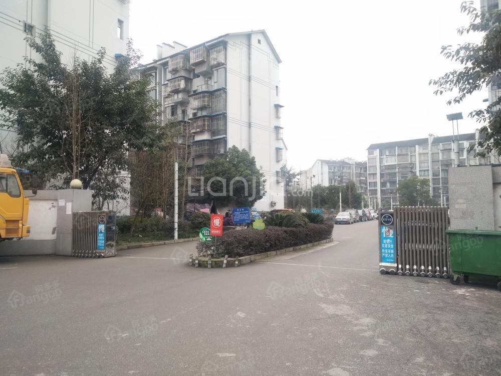 双桂新民居小区图片