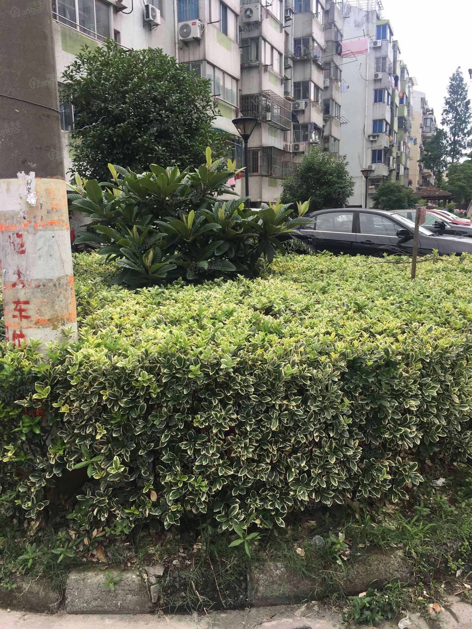 徐家浜北二村小区图片