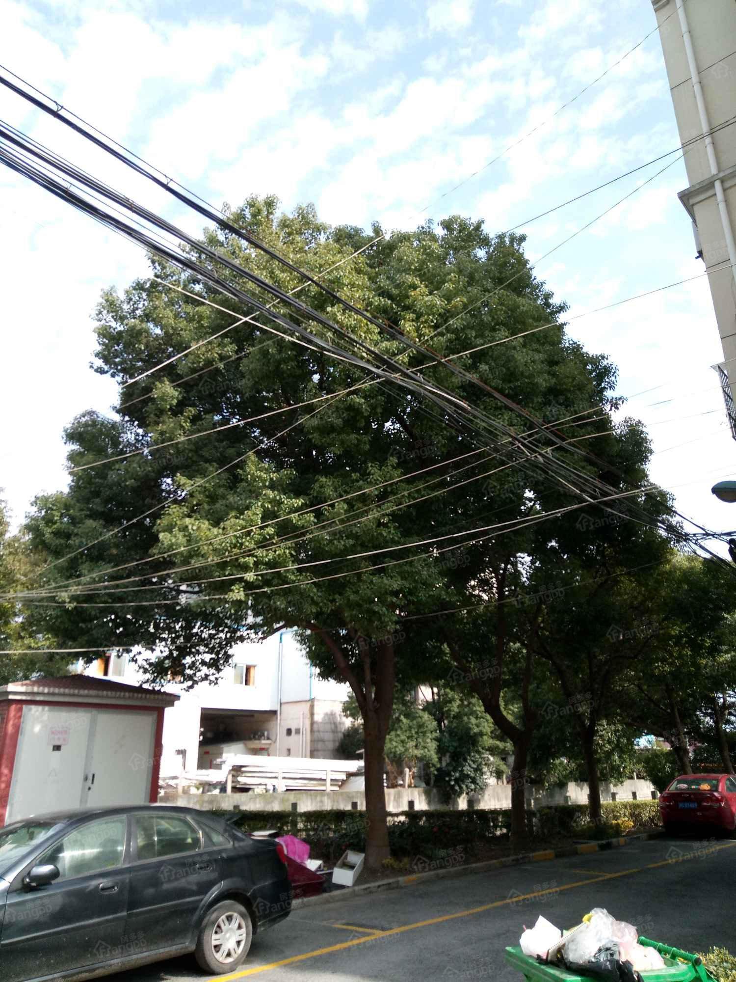 花园新村(方泰镇)小区图片