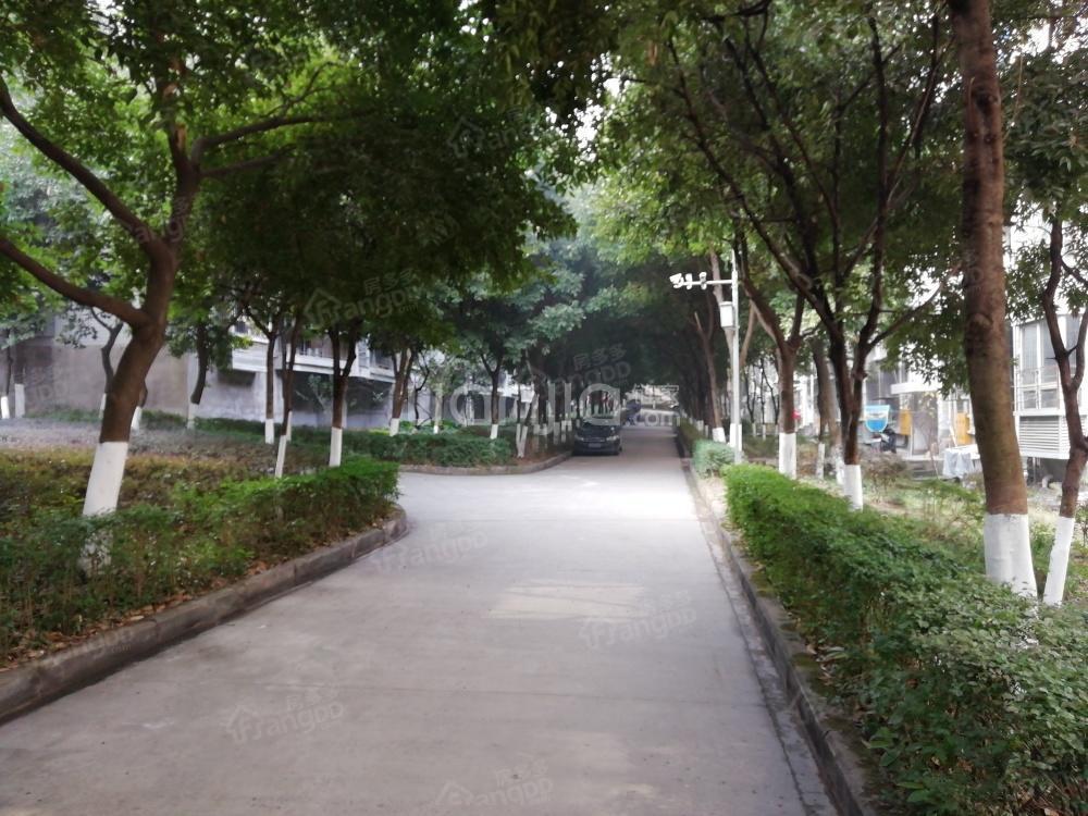 三峡医专学苑新村小区图片