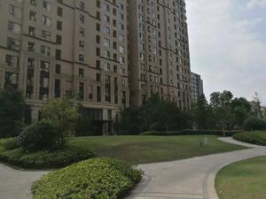 华润中央公园(公寓)小区图片
