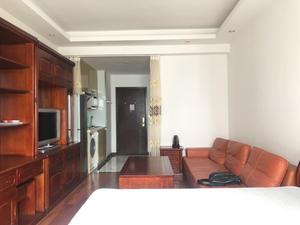 天汇广场酒店式公寓 1居 朝东 电梯房 靠近地铁 满五唯一