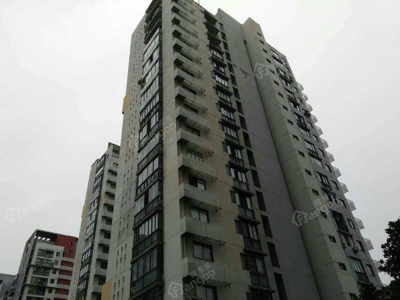 上海星港图片