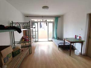 三林新村 3居 南北通透 电梯房 靠近地铁
