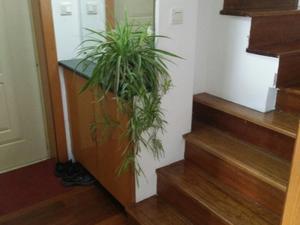 祥和花苑 5室2厅2卫