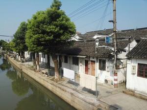 练塘镇东风街