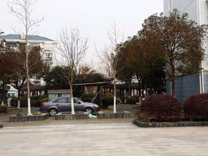 富源花苑 2居 南北通透