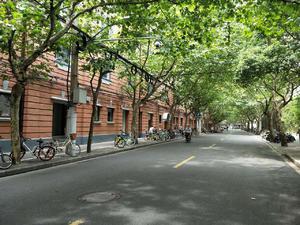 蓝宝石公寓 1居 朝东南 电梯房 靠近地铁