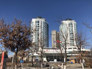 秦皇国际公寓 1居 朝东 电梯房